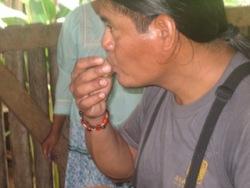 Anakonda Amazon Guide