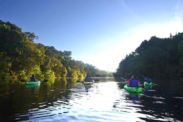 Kayaking in the Amazon Rainforest