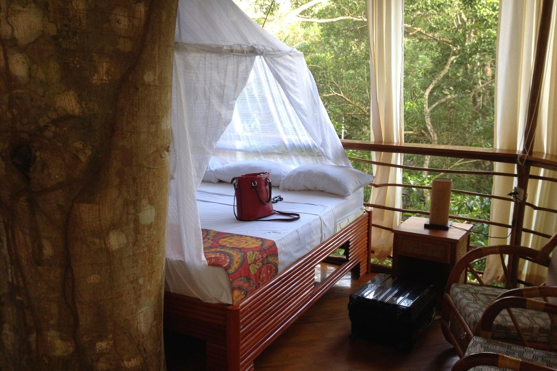 Treehouse Lodge Peru Bungalow