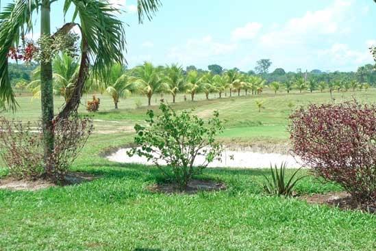 Amazon Gold Course, Iquitos