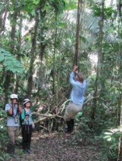 Manatee cruise testimonial jungle excursion