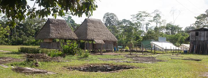 Anakonda Amazon cruise day 5