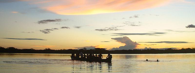 Manatee amazon cruise day 1