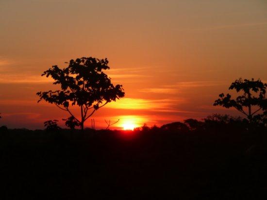 Bolivia Amazon tours sunset