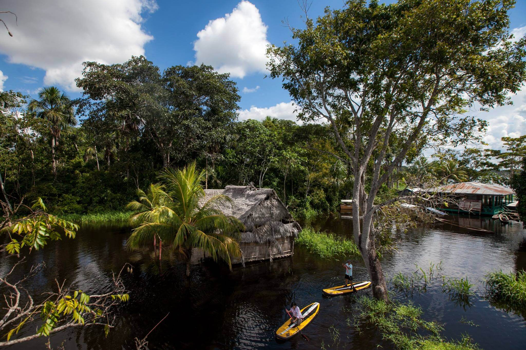 Taking in the jungle views on SUP boards in the Peruvian Amazon