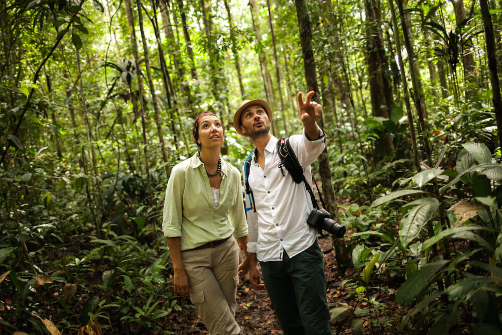 Jungle Trekking with the Delfin Amazon Cruise Team