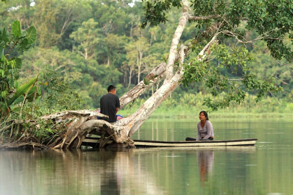 Amazon River Community