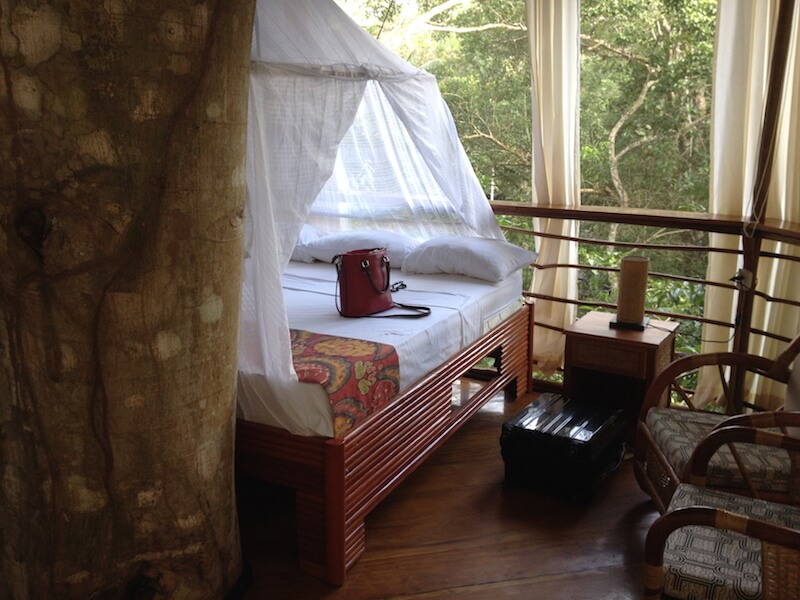 Settling into my Treehouse Room