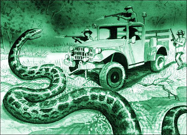 Amazon Legend, the Giant Anaconda