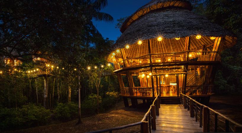 Treehouse Lodge Main Bungalow