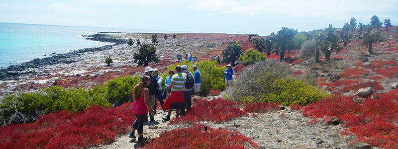 Galapagos hiking