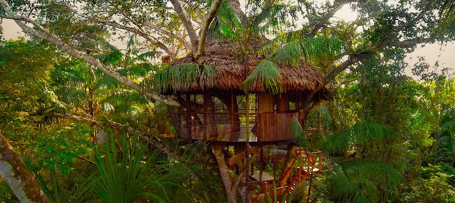 Treehouse Lodge Peru Bungalow 4
