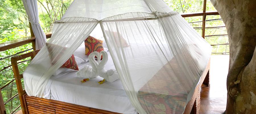 Treehouse Lodge Peru Bungalow 3