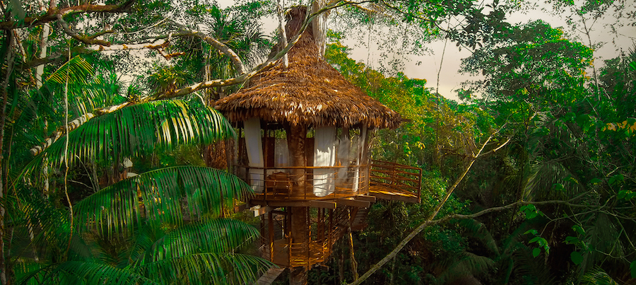 Treehouse Lodge Peru Bungalow 5