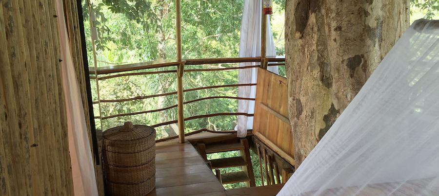 Treehouse Lodge Peru Bungalow 7