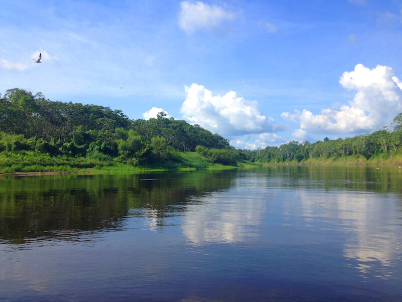 Out and about on a Jungle excursion, enjoying the Amazon scenery.