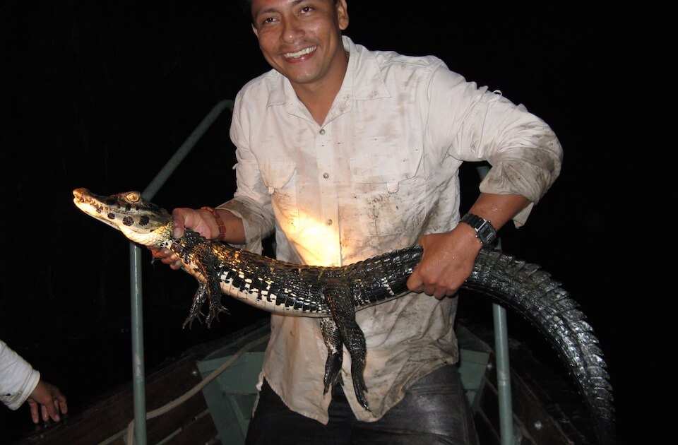 Copy of Cattleya Amazon Cruise Guide and Caiman