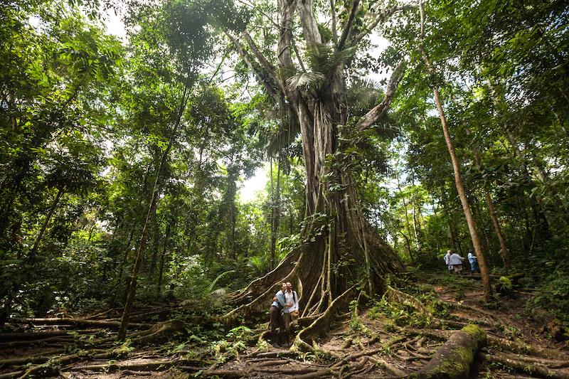 Touring the vast Amazon jungle.