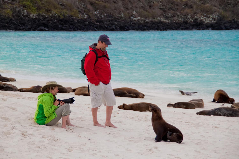 Cormorant beaches
