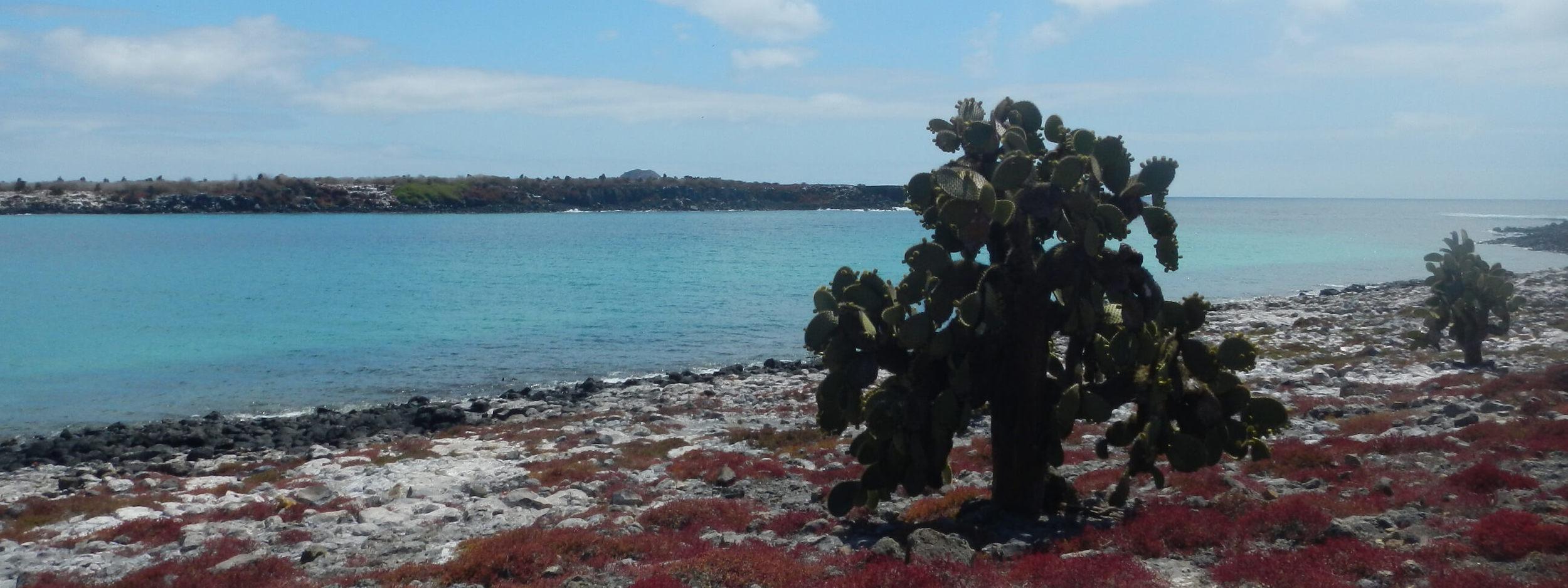 Galapagos nature hikes