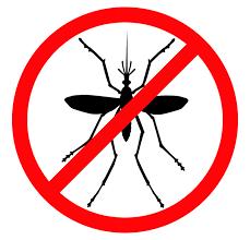 Anti-Mosquito