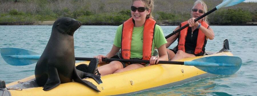 Kayaking in the Galapagos