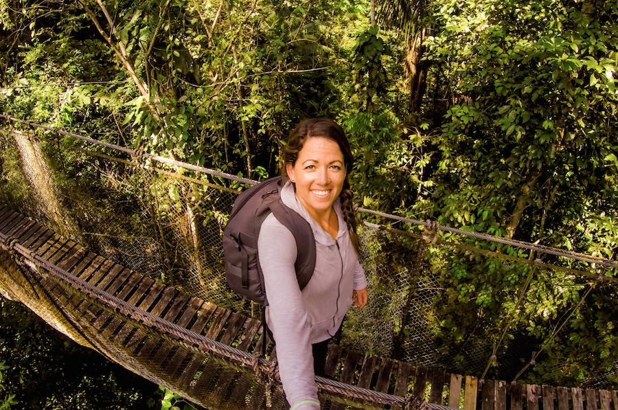 canopy bridge in the amazon