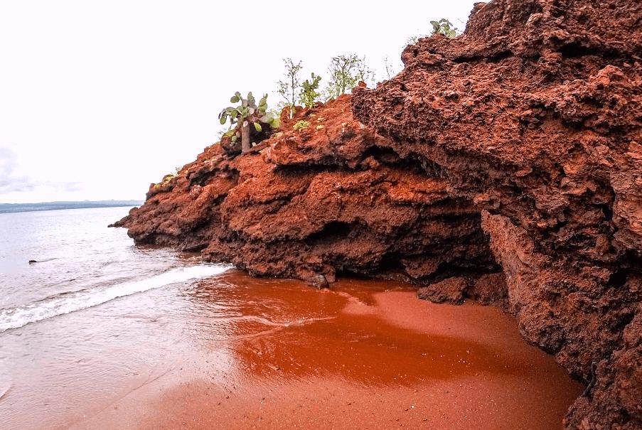 Galapagos Legend Rabida Island