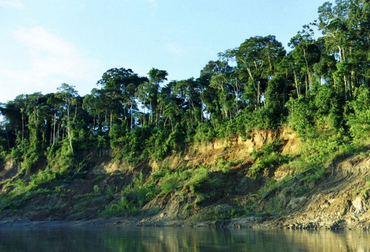 Manu National Park in Peru (Ph. Wikipedia)