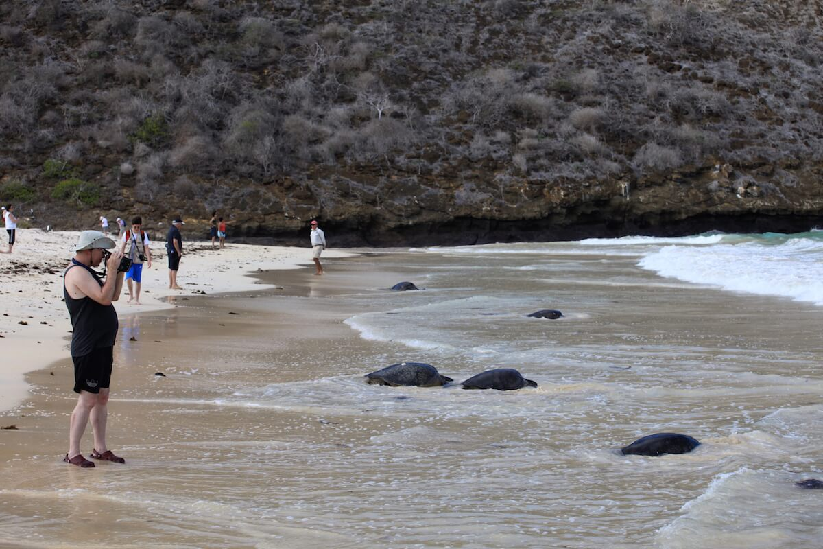 Galapagos Islands Excursions