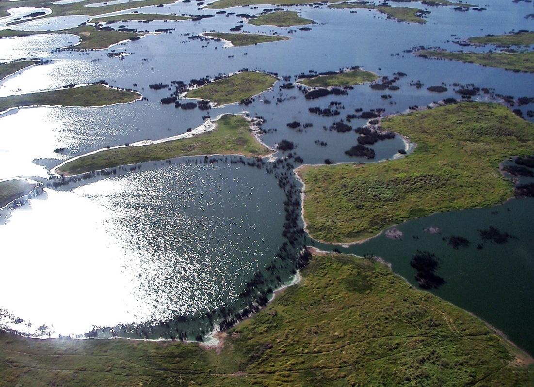 Pantanal Landscape (Ph. Wikipedia)