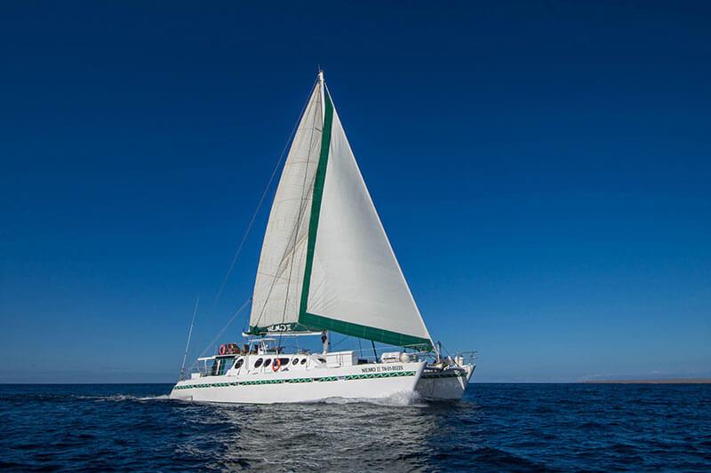 nemo-ii-motor-sail-catamaran.jpg