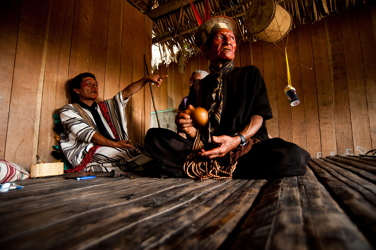 Ashaninka Tribe