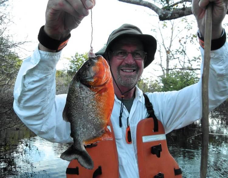 Piranha Fishing Amazon River