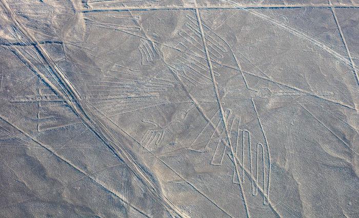 Nazca Lines Peru Condor