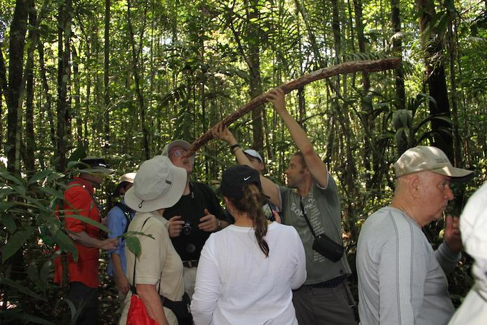 Amazon Jungle Excursion Review