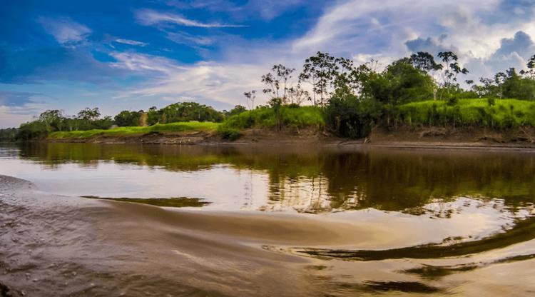 amazon river cruise tour