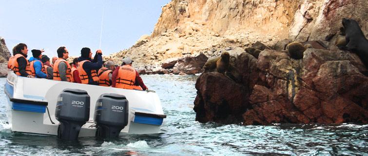 Islas Ballestas (ph. peruimpresiona.com)