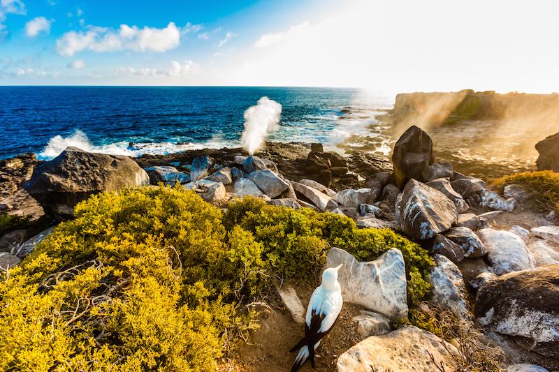 Galapagos Islands Formed