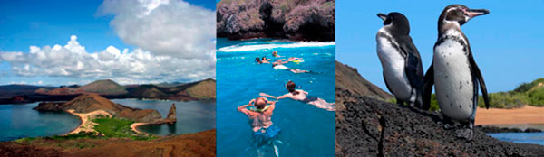 5 day northern galapagos islands