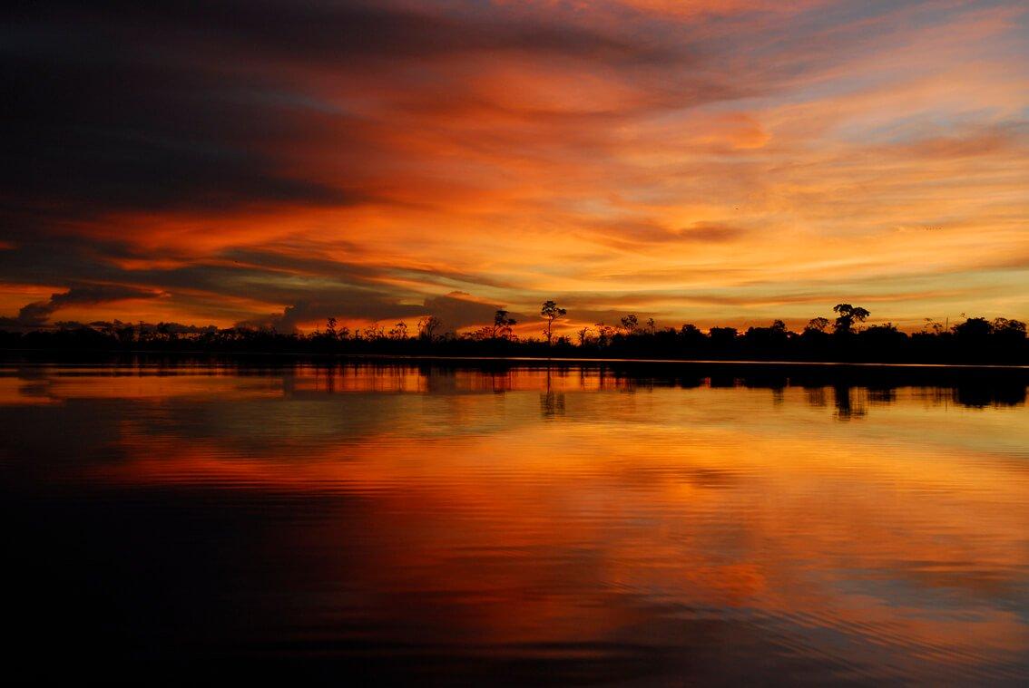 Amazonia Sunsets