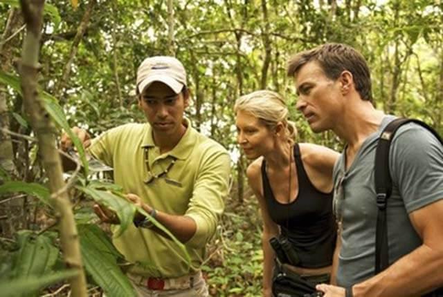 Brazil Amazon Tours
