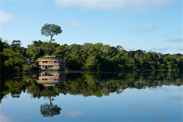 Jacare Acu Amazon Cruise Reflection