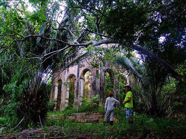 Lo Peix Tours in the Amazon