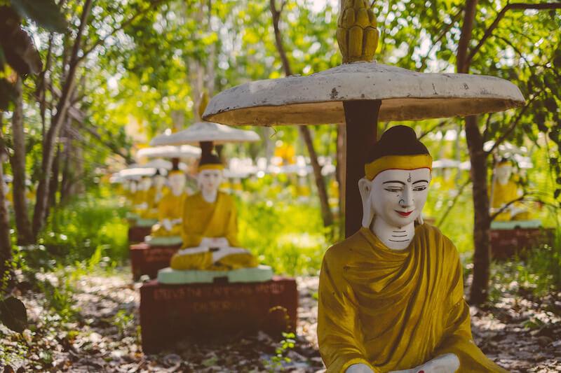 The Sanctuary Ananda Cruise