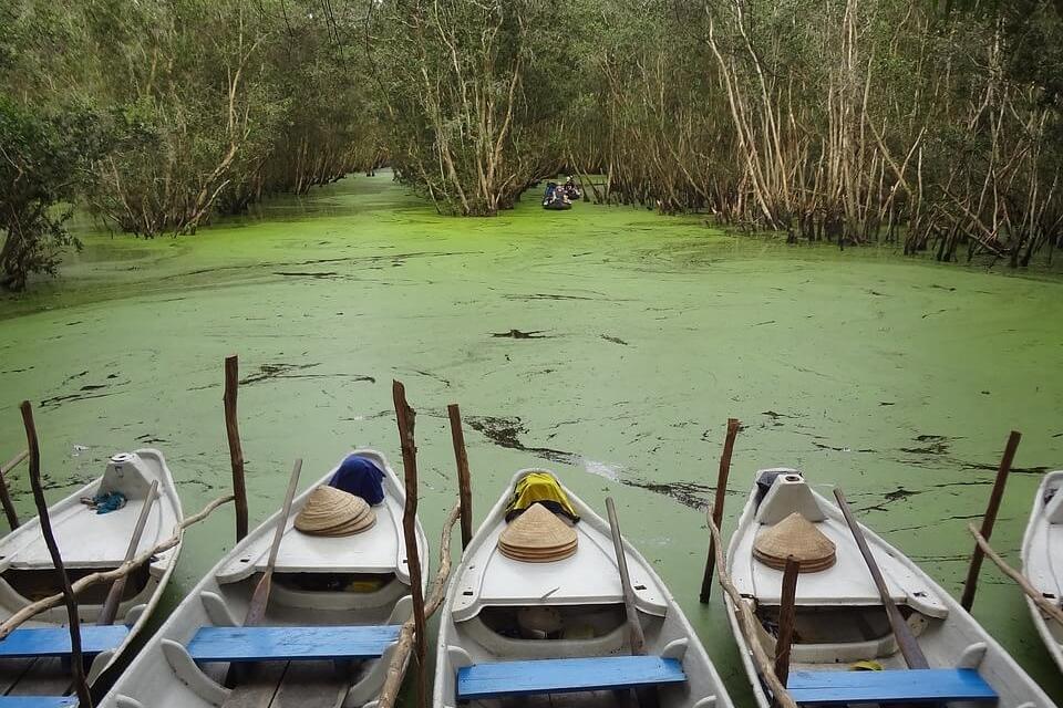 River Tour Mekong Delta