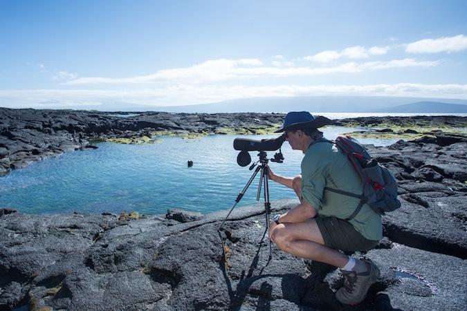 Isabela Luxury Galapagos Cruise