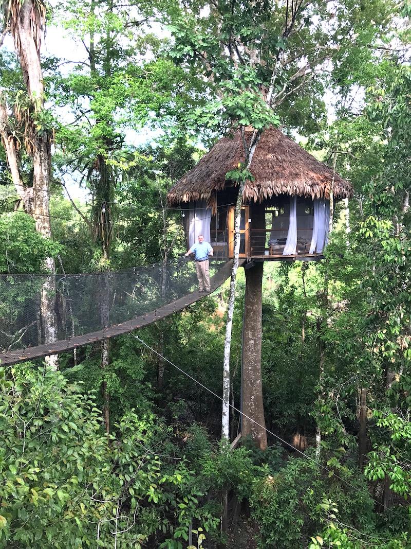 Treehouse lodge and Delfin I Amazon Cruise