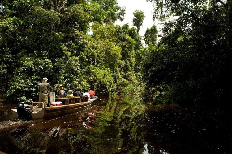 Aria Amazon Cruise Excursions