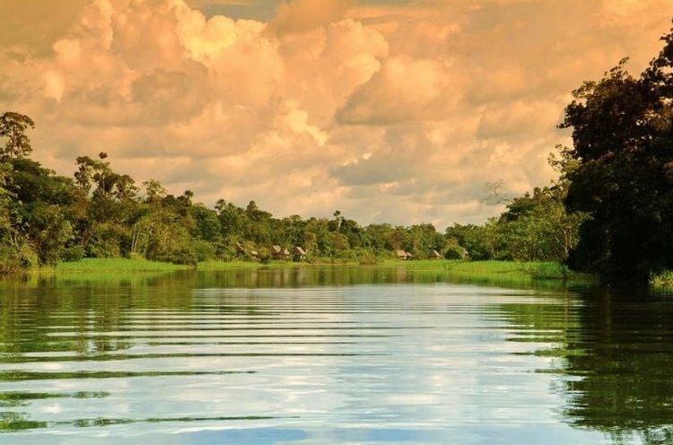 Aria Cruise Amazon